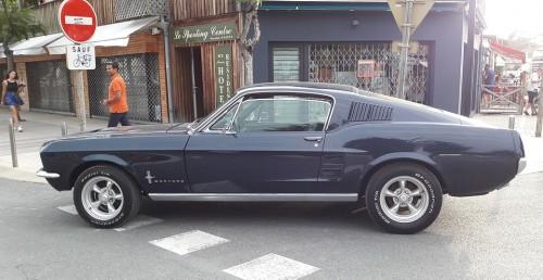 Small_Mustang201710f697b.jpg